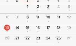 Parenting Time Calendar